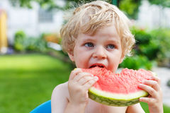 Caucasian little boy with blond hairs eating fresh watermelon in Stock Photos