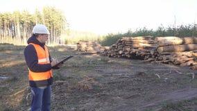 Caucasian męski inspektor sprawdza wylesienie i ilość bele, walczy caroedal ścigi zdjęcie wideo