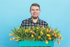 Caucasian male gardener with box of tulips laughing on blue background stock images