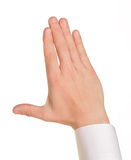 Caucasian male hand in a shirt Stock Photos