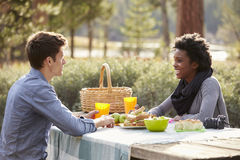 Caucasian man and Black woman talking at a picnic table Stock Photos