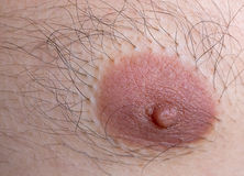 Caucasian man left nipple Stock Image