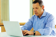 Caucasian man looking at his laptop computer Royalty Free Stock Photos