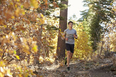 Caucasian man running on a forest trail Royalty Free Stock Image