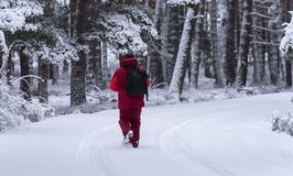 Caucasian man in a snowy landscape walking stock photography