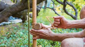 A caucasian man using bamboo wood for building natural fence in the garden. Close-up stock image