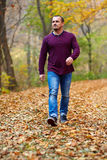Caucasian man walking in the forest Stock Image