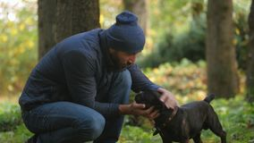Caucasian man walks in Park with his dog. Human friendship with domestic animal. fondle pet, healthy lifestyle stock video