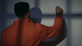 Caucasian manlig fånge som skriver frihet på cellväggen som frågar för hjälp, protest stock video
