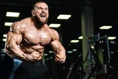 Caucasian muskulös man för stilig passform som böjer hans muskler i idrottshall Royaltyfri Foto