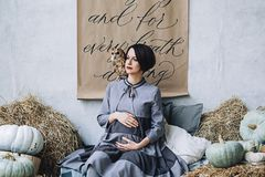 Caucasian pregnant woman with make up in gray dress hugs her belly with owl sitting on her arm, portrait of future. Mother, happy pregnancy, fasion portrait Stock Photos