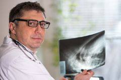 Doctor reading X-ray images Royalty Free Stock Photography