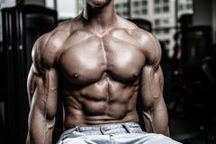 Caucasian sexig konditionmodell i idrottshallslut upp abs arkivfoton