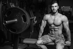 Caucasian sexig konditionmodell i idrottshallslut upp abs fotografering för bildbyråer