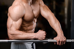 Caucasian fitness male model execute exercise with barbell. Brutal bodybuilder on diet resting and working out in the gym. Caucasian fitness male model execute royalty free stock image