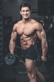 Caucasian fitness male model execute exercise with dumbbell. Brutal bodybuilder on diet resting and working out in the gym. Caucasian fitness male model execute royalty free stock image