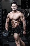 Caucasian fitness male model execute exercise with dumbbell. Brutal bodybuilder on diet resting and working out in the gym. Caucasian fitness male model execute royalty free stock images
