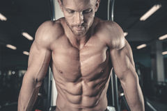 Caucasian fitness model in gym close up abs. Handsome caucasian fitness model in gym close up abs concept man on diet shirtless training six pack healthcare stock image