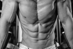 Caucasian fitness model in gym close up abs. Handsome caucasian fitness model in gym close up abs concept man on diet shirtless training six pack healthcare stock photos