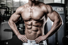 Caucasian fitness model in gym close up abs royalty free stock photo