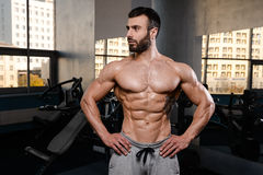 Caucasian fitness model in gym close up abs. Handsome caucasian fitness model in gym close up abs concept man on diet shirtless training six pack healthcare stock images