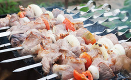 Caucasian shashlik Royalty Free Stock Photo