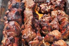 The Caucasian shish kebab on skewers Stock Photos