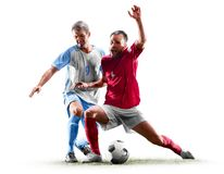 Caucasian soccer players isolated on white background royalty free stock photography