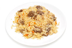 Caucasian traditional pilaf. Rice with meat Royalty Free Stock Photos