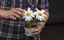 Caucasian unrecognizable male hands holding a pot with artificia Stock Photos
