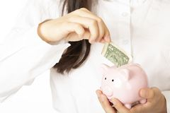 Woman holding a piggy bank on white background royalty free stock photo