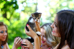 Caucasian woman with kitten Royalty Free Stock Image