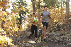 Caucasian woman and man running on a forest trail Royalty Free Stock Photos