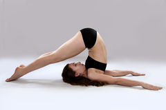 Caucasian woman is practicing yoga . In studio.  grey background Royalty Free Stock Photo