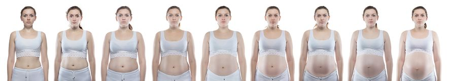 Caucasian woman during pregnancy with bare belly. On white background stock photo