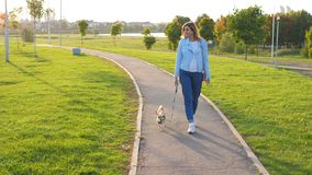 Caucasian Woman Walks Outside With His Little Dog At Sunset In A Green Park royalty free stock images