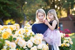 Caucasian woman with little girl in hands in rose garden, mommy and me concept, cuddling, looking to each other royalty free stock photos