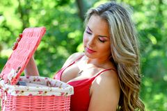 Caucasian young woman with pink vintage basket Stock Photos