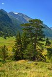 Caucaso in autunno Fotografie Stock Libere da Diritti