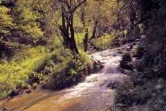 caucasus заволакивает ushba неба гор горы ландшафта shurovky Стоковые Фотографии RF