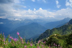 caucasus Foto de archivo