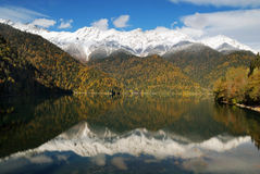 Caucasus. Abkhazia. Riza lake at autumn. Caucasus. Abkhazia. Riza lake, autumn yellow-green forest and white snow peaks, reflecting in the calm water of the lake royalty free stock images