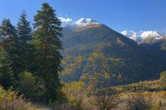 Caucasus in autumn. This is colorful landscape in Caucasus mountains in fall Royalty Free Stock Photos