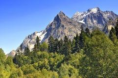 Caucasus berg Royaltyfri Bild