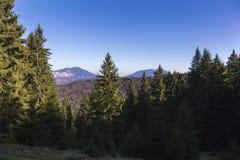 caucasus clouds ushba för sky för liggandebergberg shurovky Royaltyfria Bilder