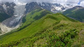 caucasus dombai główny zakres Rosji Zdjęcia Stock