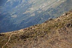 caucasus Een landschap in de bergen Royalty-vrije Stock Foto