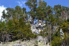caucasus foothills arkivbilder