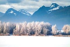 caucasus Georgia gudauri gór zima Norwegia Zdjęcia Royalty Free