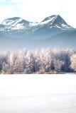 caucasus Georgia gudauri gór zima Norwegia Fotografia Royalty Free